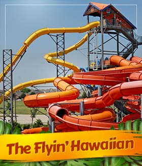 THE FLYIN' HAWAIIAN